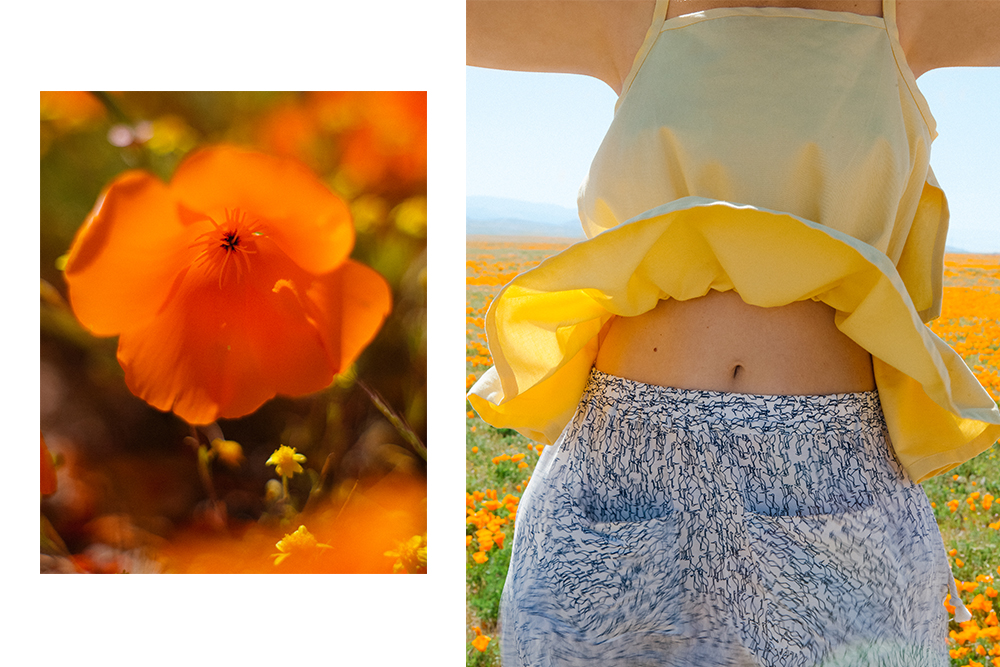 Désiréeklein  'Hedy' top , Selva Negra  'Kinship' shorts