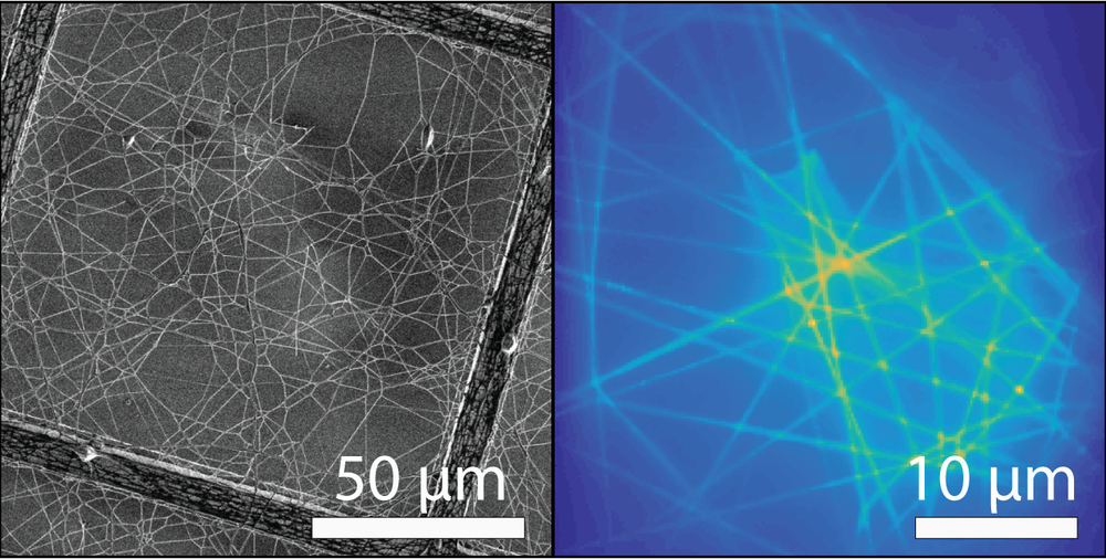 Photonic networks of subwavelength waveguides, SEM (left) and light emission patter (right).