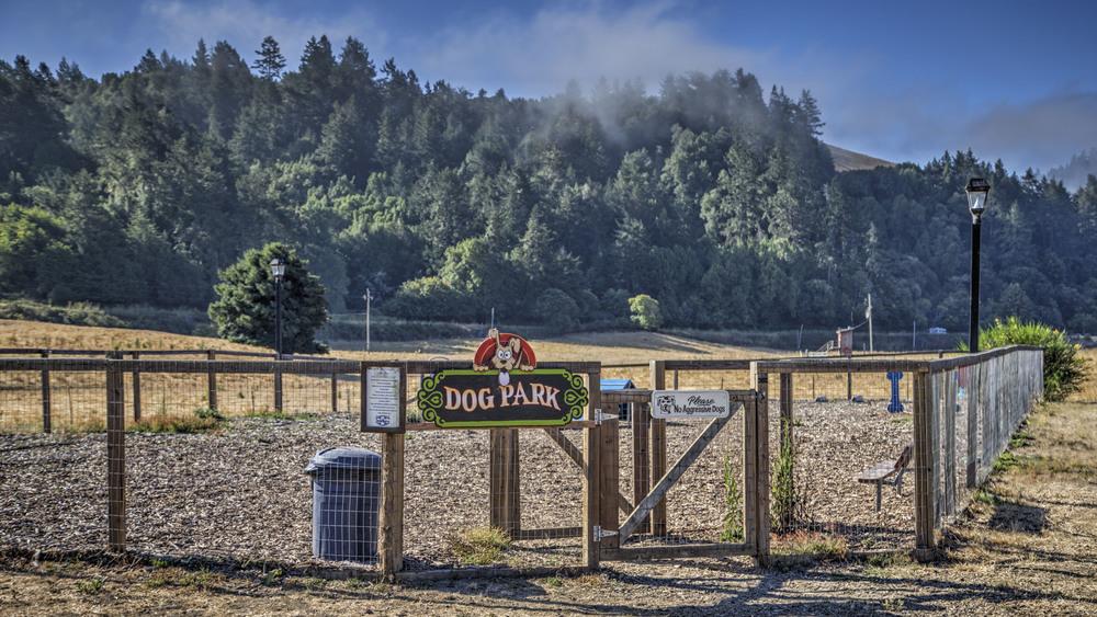RV Park, Dog Park, photography