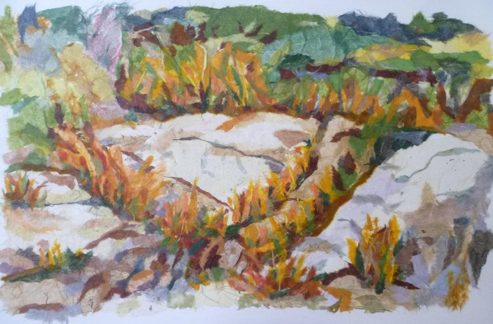 shore rocks-Anne Marie Crotty.jpg