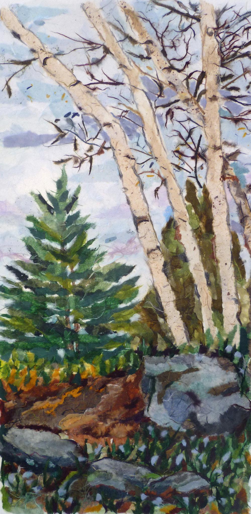 Kylee's birches-Crotty.jpg