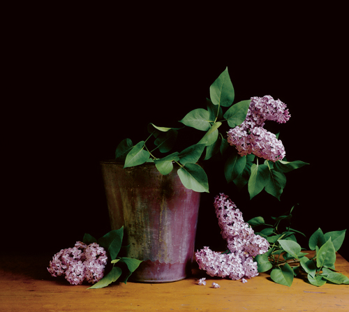 Lilacs-19.5in.-x-22in.jpg