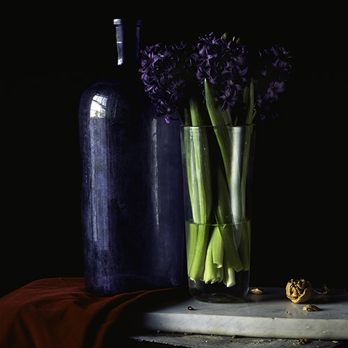 Still-Life-With-Hyacinth-and-Walnut.jpg