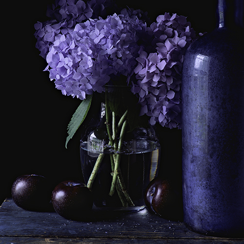 Still-Life-With-Hydrangea-and-Plums.jpg