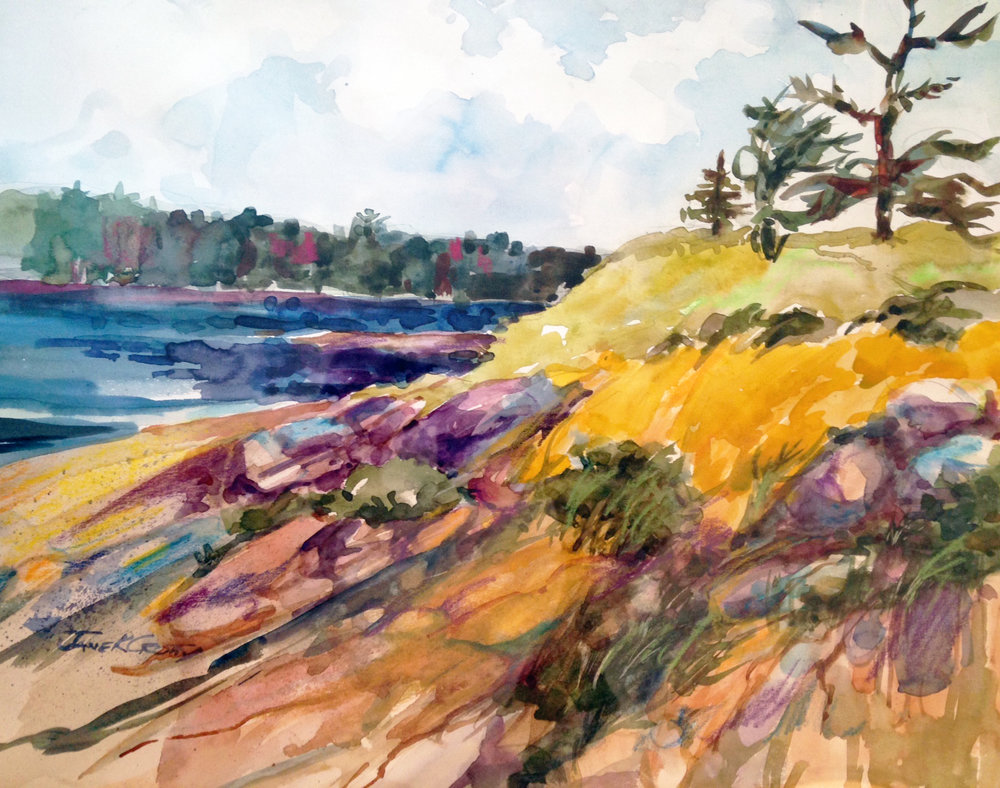 Jane Crotty-Maine Coast.jpg