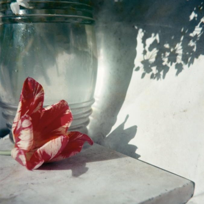Still Life. Lartigue. Opio Village, Provence, 1963