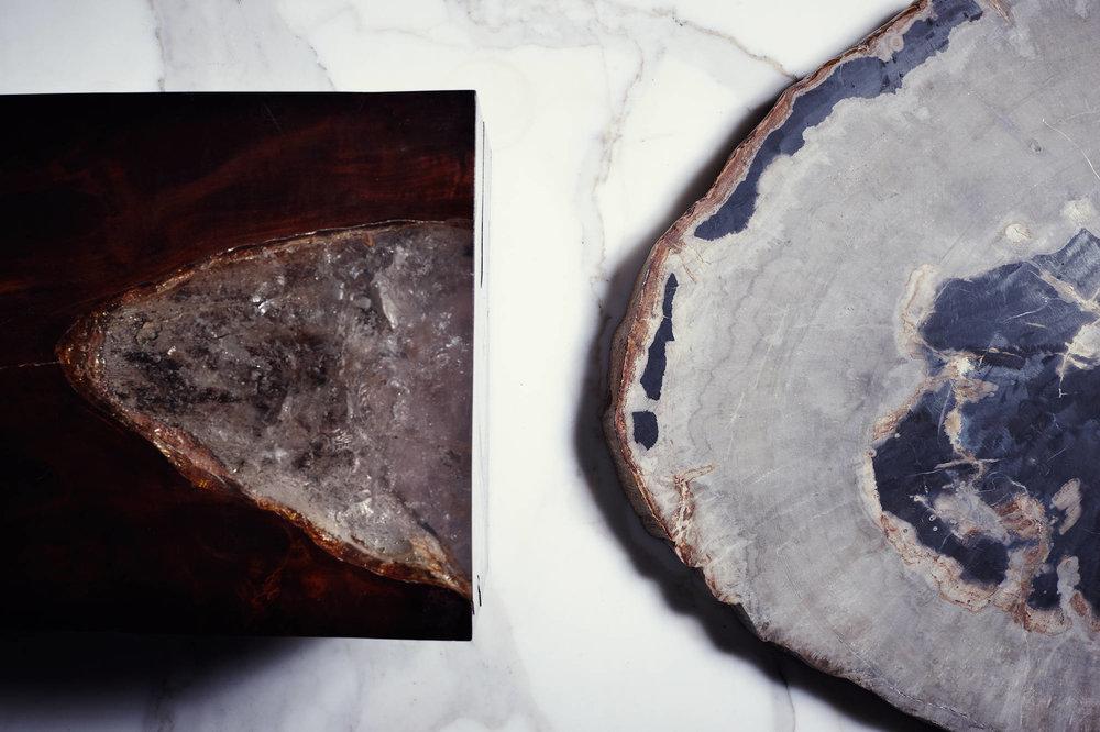 The Line | Resin Cube &Petrified Wood | Adrianna Shamaris