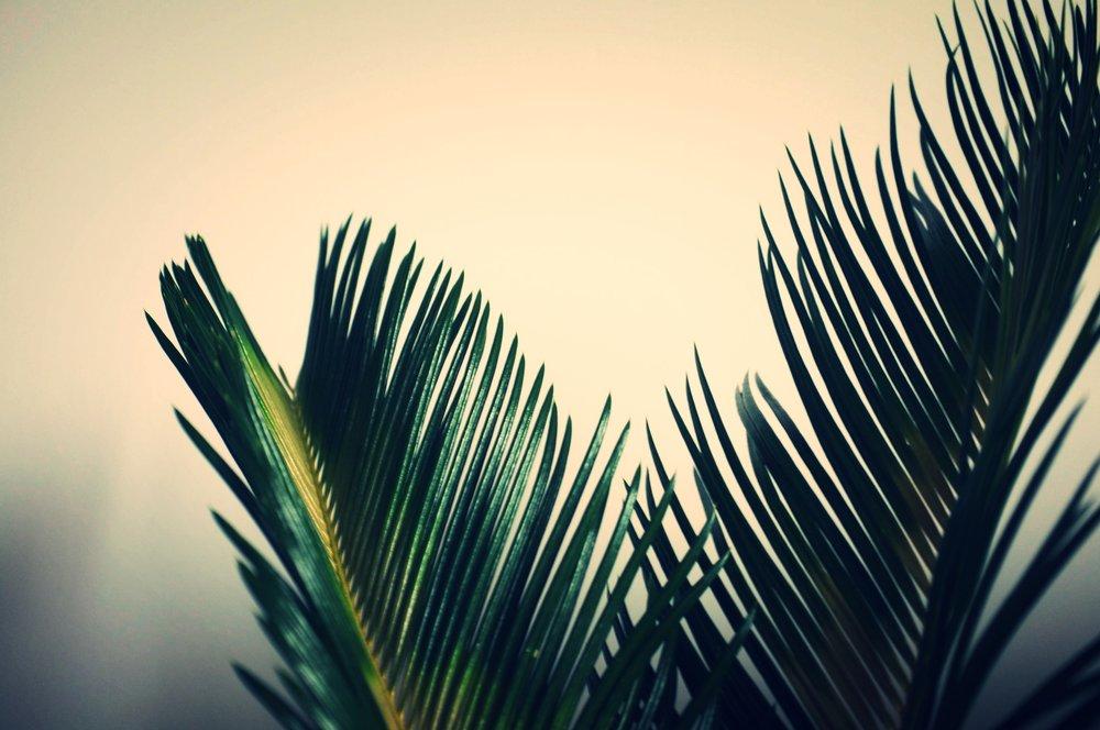 Photography: tM