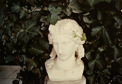 Photography: Luigi Ghirri | Capri, 1981