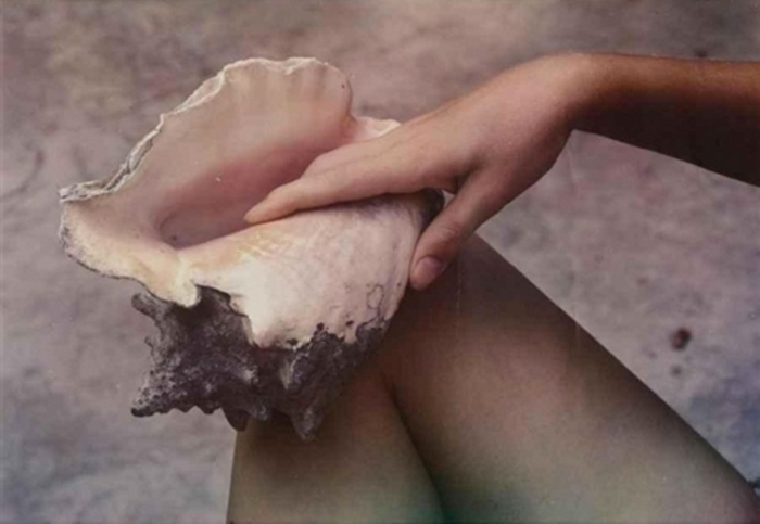Photography: Paul Outerbridge   Hand, Shell, and Leg