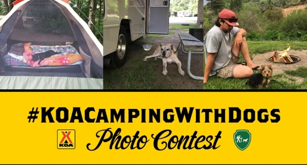 Partnership with @CampingWithDogs on Instagram to co-host a month-long Photo Contest with KOA