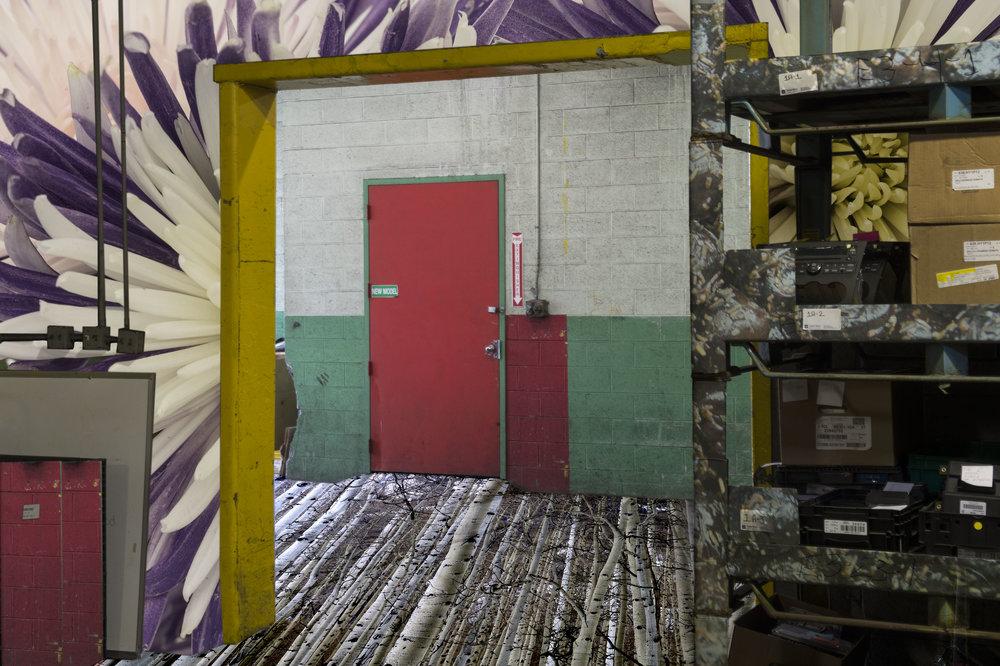 Behind the Coral Door72dpi.jpg