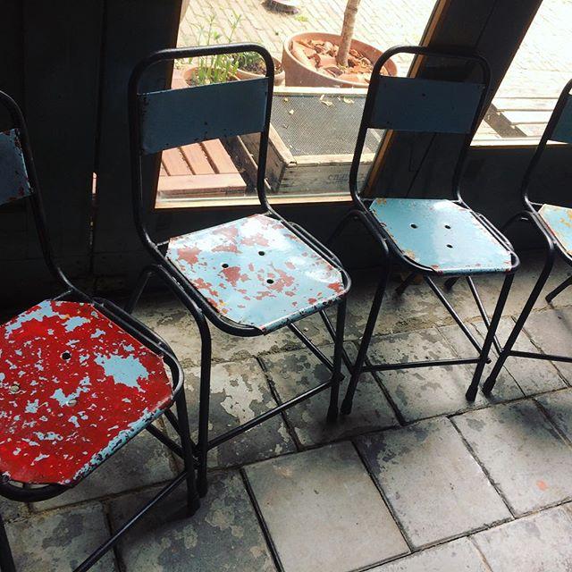 Een stukje native thuis of in je tuin? We verkopen vier van onze vintage metalen stoeltjes (vraagprijs 100 euro voor samen) wie maken we hier blij mee?