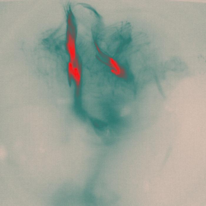 "Marco Pinter-   ""Less Ephemeral #3""   (24""x24"") -$580"