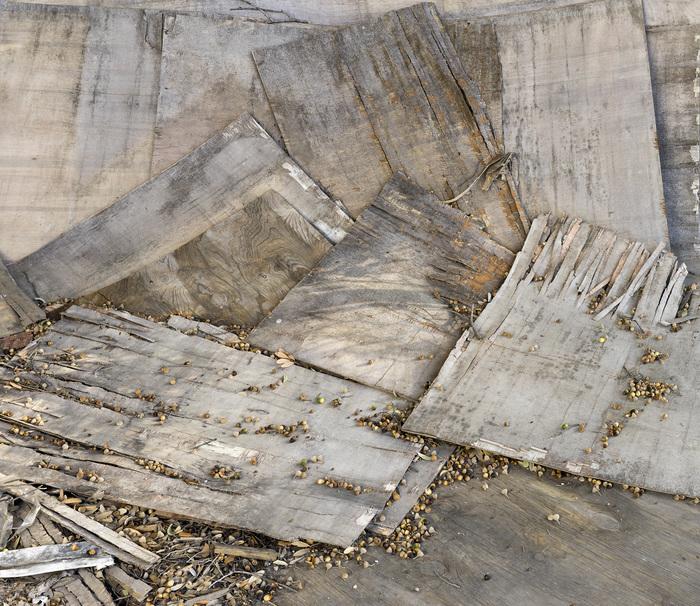 "Bryan Florentin -   ""    Temporary Landcape Fragment 5    ""   (31""x36"") -$1600"