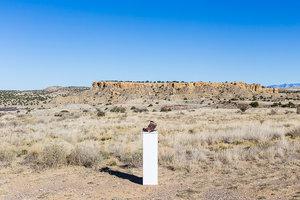"Noah McLaurine-  ""Ojito Pedestal""   (24""x36"") -$1000"