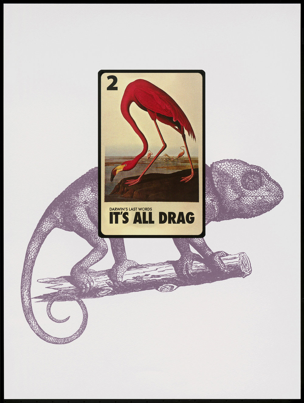"Dana Kadison -   ""Loteria Card #2 Darwin's Last Words: It's All Drag""   (18""x24"") -  $750"