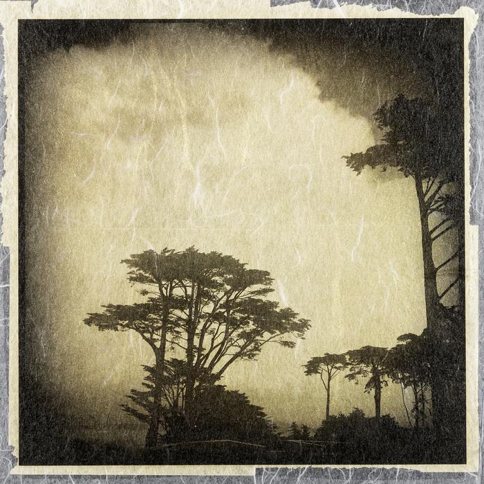 "Arie Knoops- ""Presidio"" (10"" x 10"") - $600"