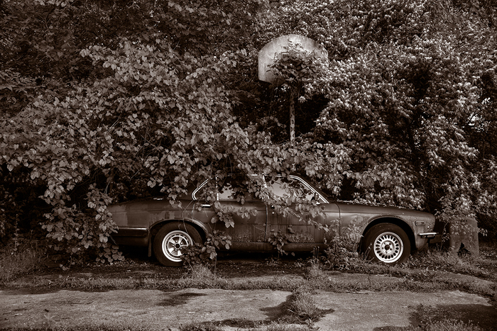 "Gary Beeber -   Abandoned Jaguar -   Photograph (10"" x 6.667"")  $500"
