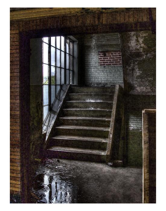 "Nancy Faulds -   Indoor Waterfall -   photography (16"" x 20"")  $250"