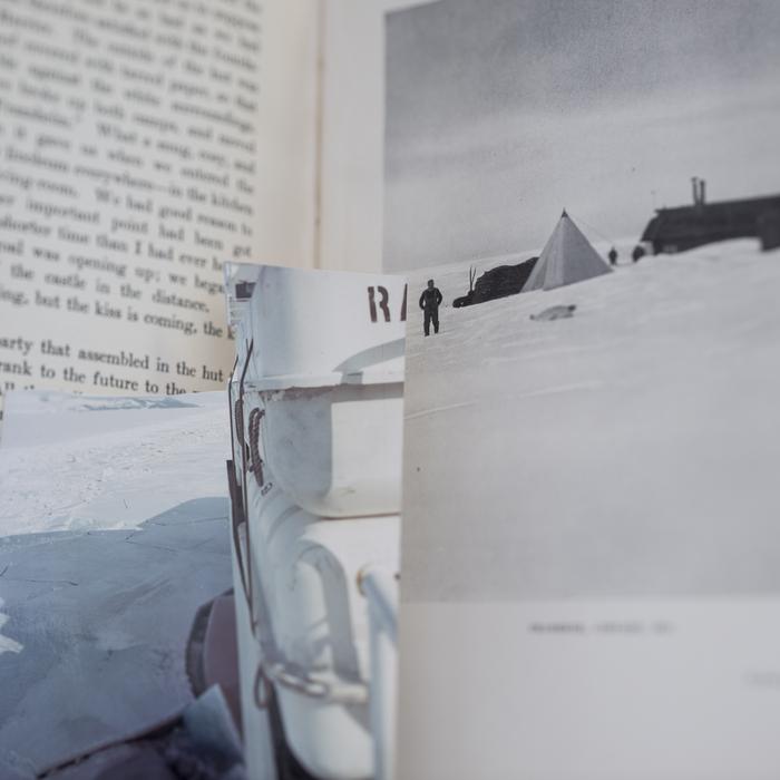 "John Holmgren -   District of the Penguins -   Archival Inkjet Print (23"" x 23"")  $650"