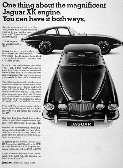 TunnelRam_Jaguar (1).jpg
