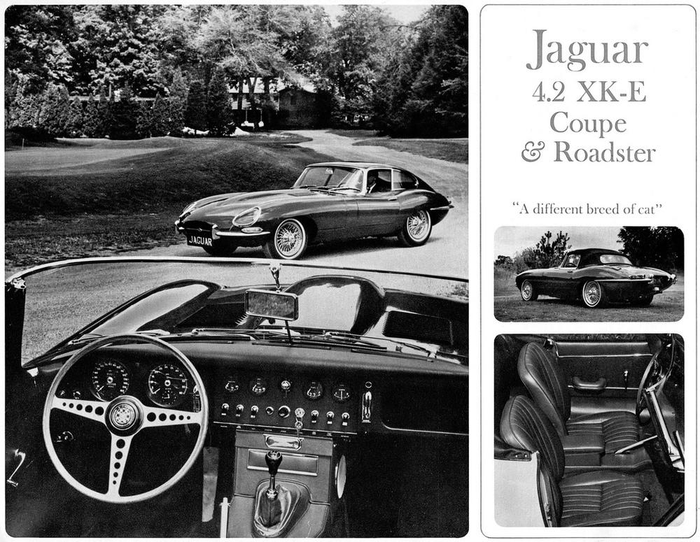 TunnelRam_Jaguar (11).jpg