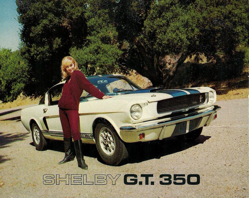 TunnelRam_Shelby (11).jpg