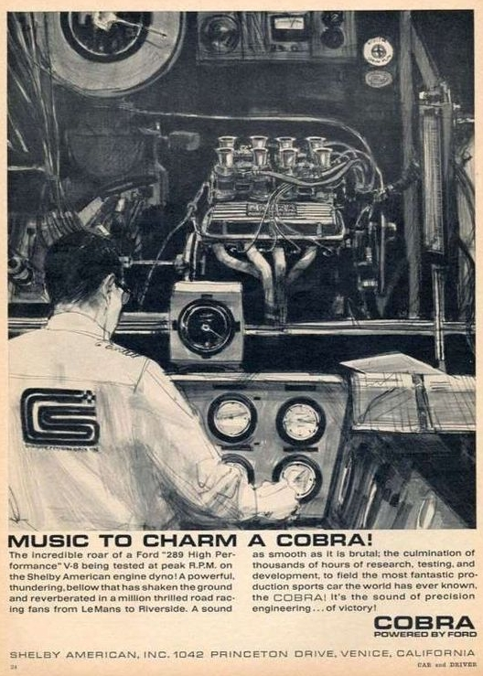 TunnelRam_Music to Charm a Cobra - Shelby.jpg