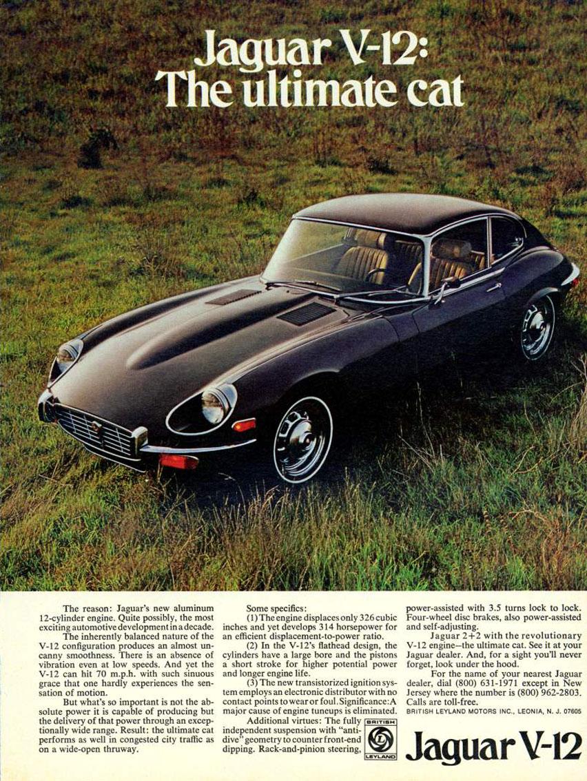 tunnelram.net_Jaguar xk-e V12 (14).jpg