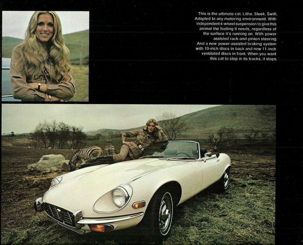 tunnelram.net_Jaguar xk-e V12 (6).jpg