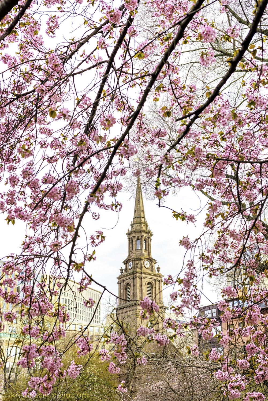 Arlington Church, Public Garden