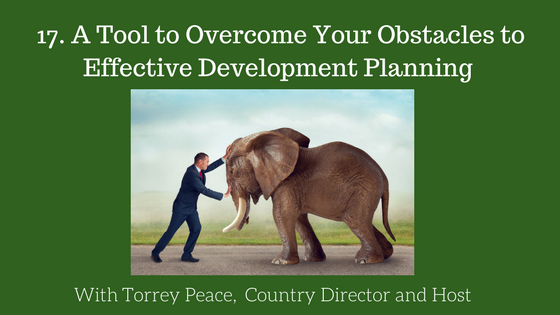 Effective Development Planning