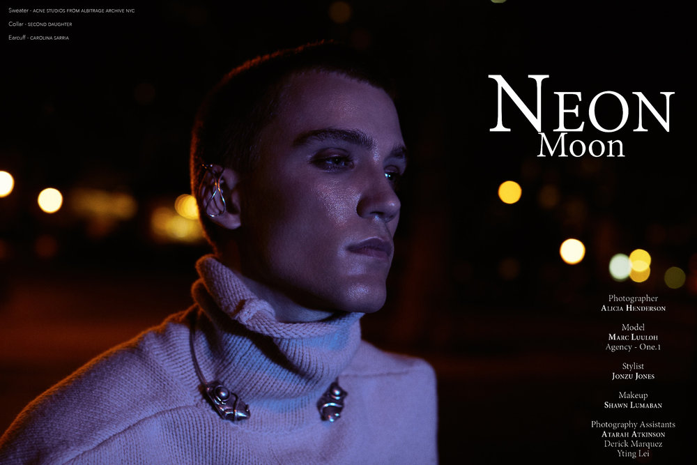 neontitle.jpg