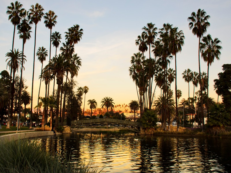 Echo Park Lake. Probably the best hood in the city at the moment. Photo credit: Leonard Drorian