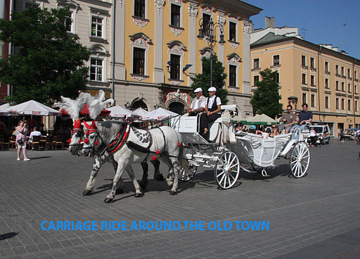 Horse_and_carriage_2.jpg