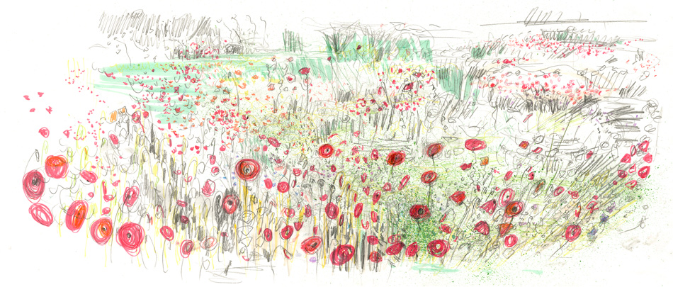 Fizzy Poppies: Maxine Greer