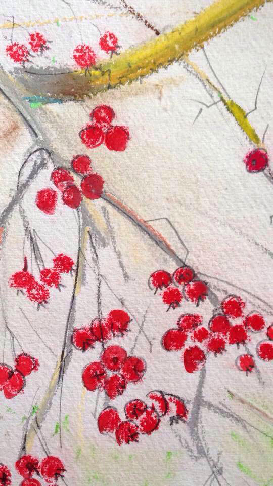Berry Sketch detail by Jane Hindmarch