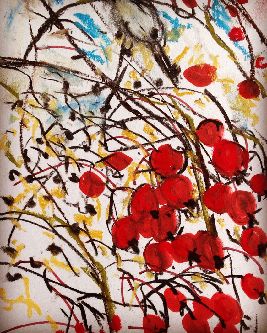 Hawthorn Berry detail by Maxine Greer
