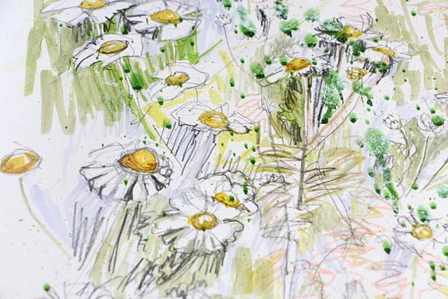 Max's daisy detail