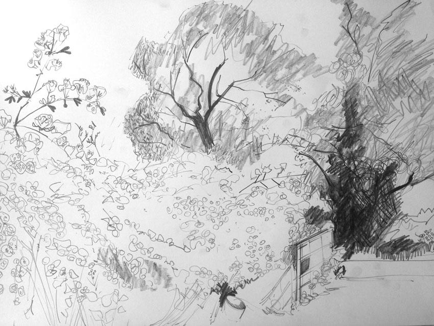 Wothorpe Bridleway: Jane Hindmarch