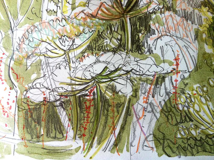 Hemlock: Maxine Greer