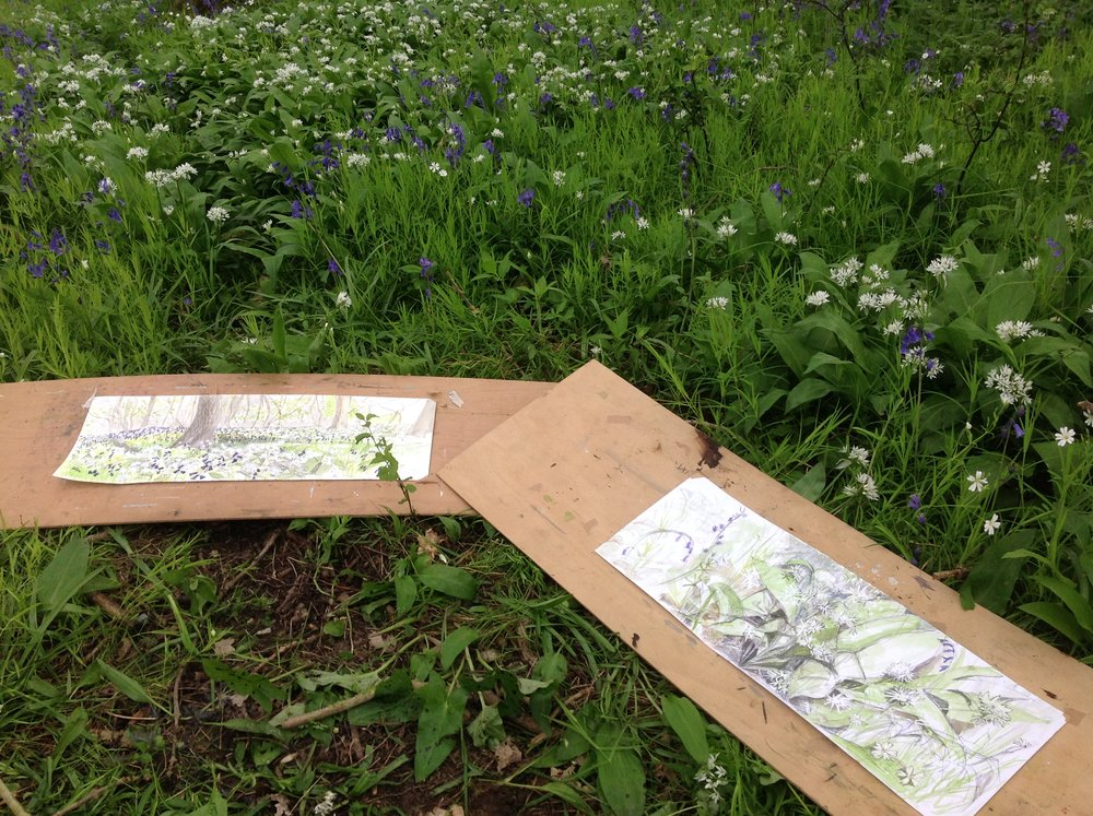 Jane's and Maxine's Sketches- See our Blog 'Held to Ramson' For More Details