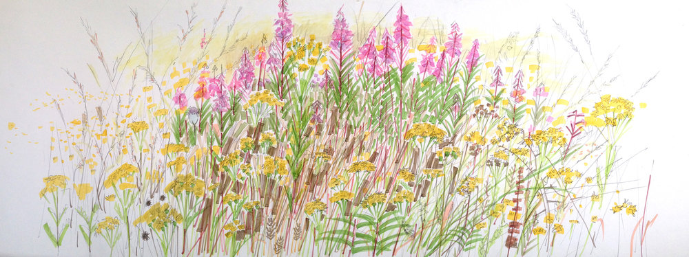 Nature-Reserve,-Rosebay-Willow-Herb.-Mixed-Media.-40cm-x-110cm.jpg