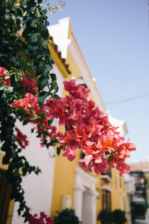 Marbella - clairemenary.com-5128.jpg