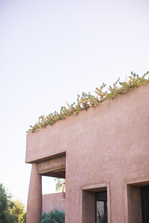 Marrakech - clairemenary.com-2332.jpg