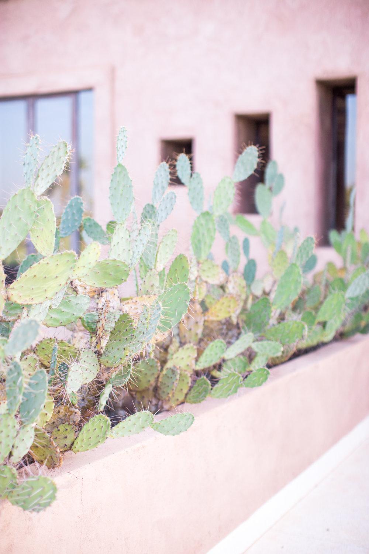 Marrakech - clairemenary.com-2347.jpg