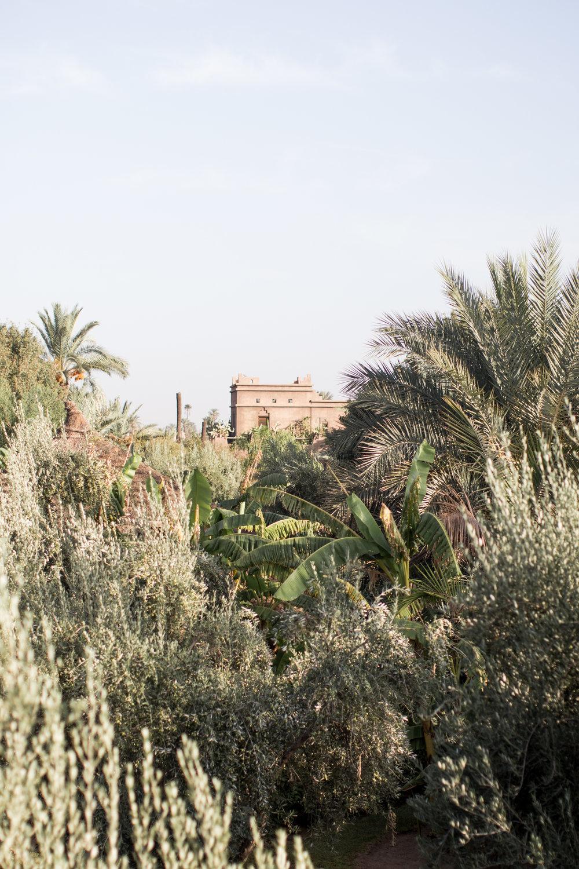 Marrakech - clairemenary.com-2352.jpg