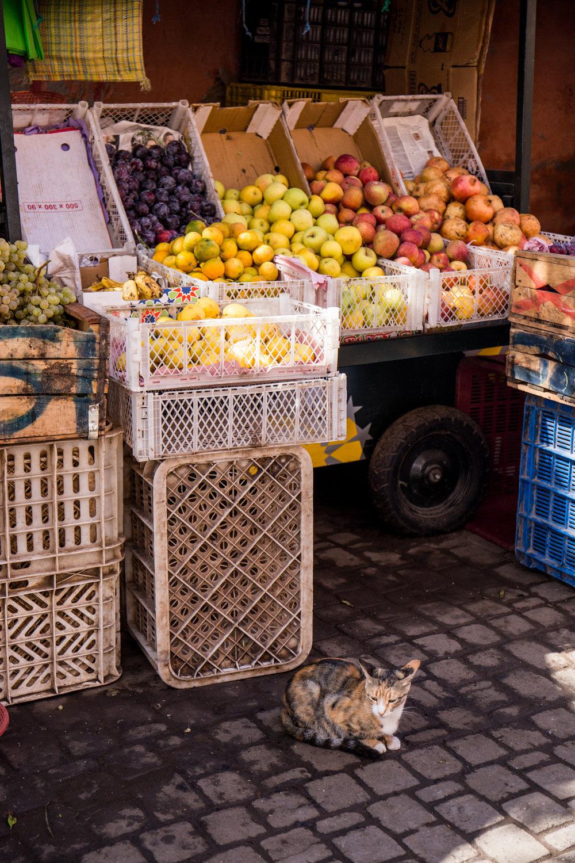 Marrakech - clairemenary.com-2464.jpg