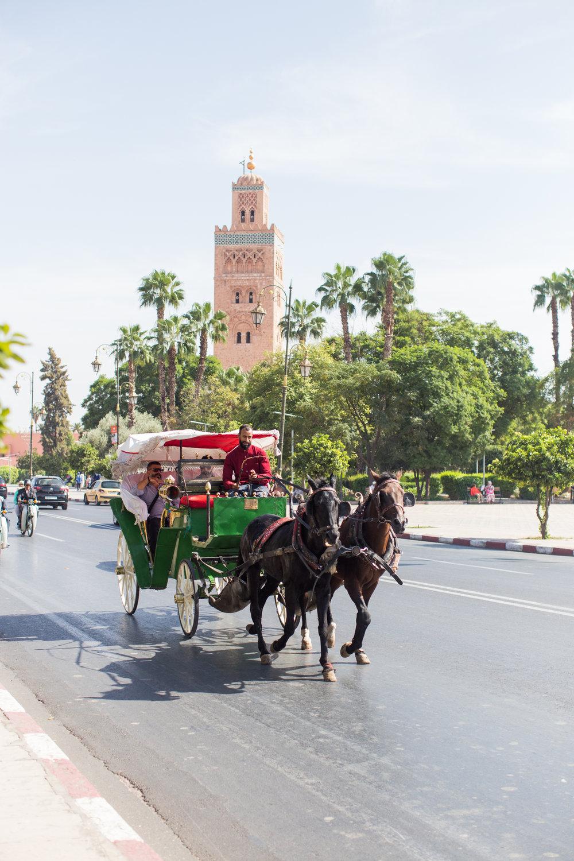 Marrakech - clairemenary.com-2753.jpg